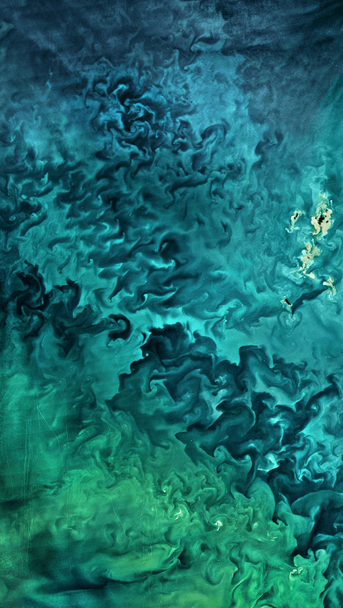 Wlppr Breathtaking Images From Above