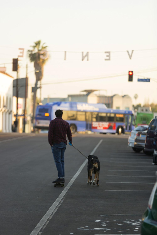 Как полюбить Лос-Анджелес за три дня (фото 38)